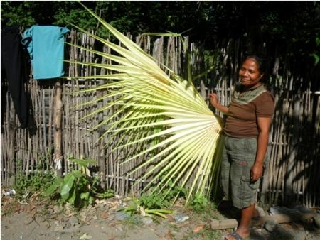 東ティモール 椰子のかご